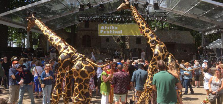 Afrika Festival Hertme 8 juli 2018